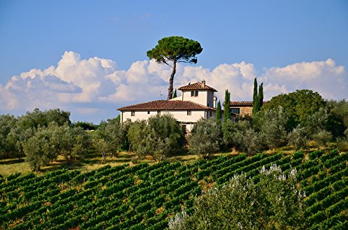 Home Comforts Framed Art for Your Wall Italian Tuscany Countryside Scenic Villa Nature Vivid Imagery 10 x 13 Frame