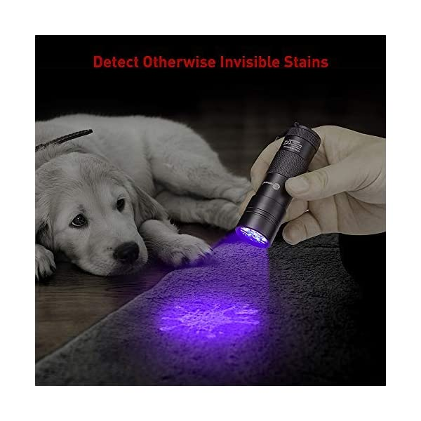 TaoTronics Black Light, 12 LEDs 395nm UV Blacklight Flashlights Detector for Pets Urine and Stains with 3 Free AAA Batteries 3