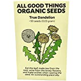 True Wild Dandelion (Taraxacum officinale) Seeds (~50): Certified Organic, Non-GMO, Heirloom, Open Pollinated Seeds from the United States