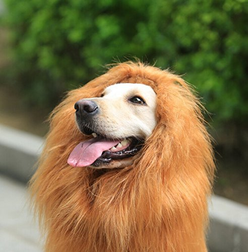 [Looching Lion Mane Dog Costume Wig, Brown] (Make Lion Costume For Dogs)