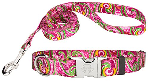 Country Brook Design Pink Paisley Premium Dog Collar & Matching Leash Set-S