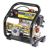 Royalking BC 768 High Pressure Portable Power Sprayer/Car Washer/Garden Equipment
