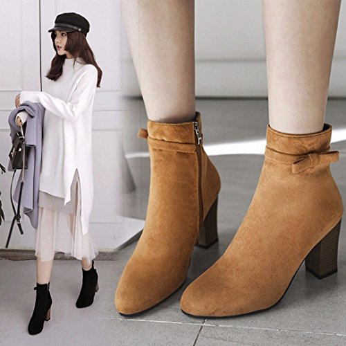 MML Women Shoes, Spring Autumn Casual Boots Square Hight Heel Zip Bowknot Ankle Boots 4.5-7 UK Brown