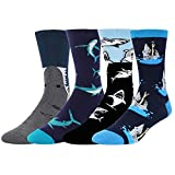 Men's Novelty Funny Shark Attack Crew Socks Crazy Cool Patterned Cotton Socks in Navy Blue Black, 4 Pack with Gift Box