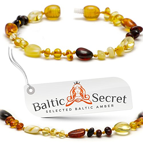 New Amber Teething Bracelet or Anklet / 50% Richer and Higher in Value 13.5/5.3-MLT.P.MX