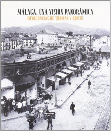 Descargar Libro Málaga, Una Visión Panorámica Javier Ramírez González