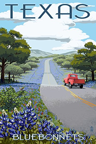(Texas - Bluebonnets and Highway (9x12 Art Print, Wall Decor Travel Poster))
