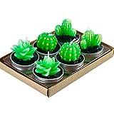 MoGist 6Pcs Simulation Cactus Shaped Plant Candles Romantic Home Decoration(Random Mix)