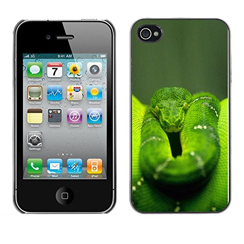 Omega Case PC Polycarbonate Cas Coque Drapeau - Apple iPhone 4 / 4S ( Cool Green Jungle Snake )