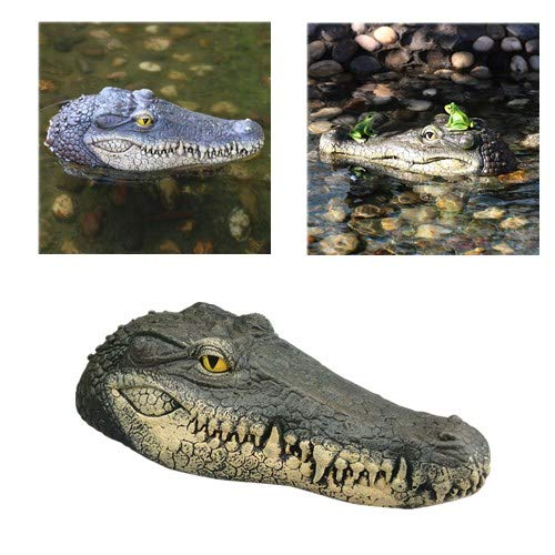 - Alligator Head Decoy & Pond Float,Outdoor Water Solution Floating Realistic Crocodile Head Garden,Pool Alligator Head Enemy Art Decor for Goose,Predator,Heron,Duck Control (Green)