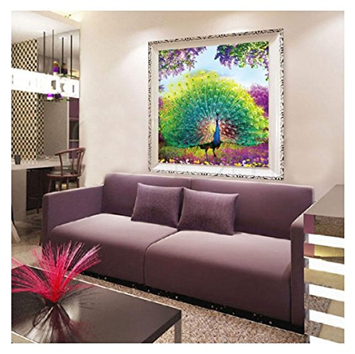 Diamond Painting,Rambling DIY 5D Diamond Peacock/Owl Embroidery Painting Flower Cross Stitch Home Decoration (A)