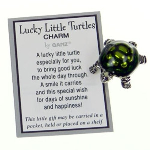 lucky-little-turtle-pocket-charm