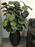 LCG Floral Fiddle Leaf Fig Artificial Tree, 56'' H x 26'' W x 26'' D, Green