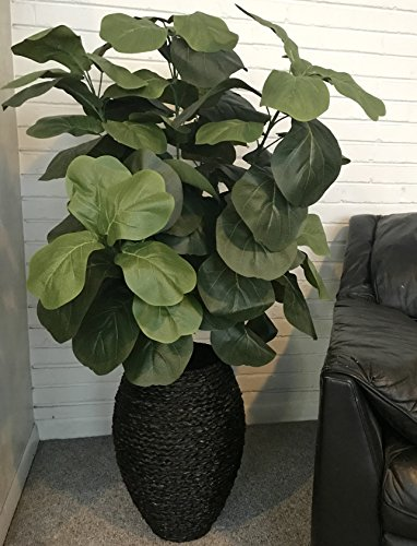 LCG Floral Fiddle Leaf Fig Artificial Tree, 56'' H x 26'' W x 26'' D, Green by LCG Floral