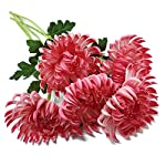 Floral-Kingdom-Artificial-Real-Touch-24-Chrysanthemum-Flowers-Fuji-Spider-Mum-for-Home-Office-Weddings-Bouquets-Pack-of-5-Rosy-Pink