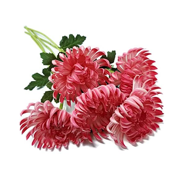 Floral Kingdom Artificial Real Touch 24″ Chrysanthemum Flowers Fuji Spider Mum for Home, Office, Weddings, Bouquets (Pack of 5) (Rosy Pink)