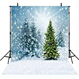 Photography Backgrounds Christmas 8x8Feet Photo Backdrops Snowflake Backgrounds Computer Printed Vinyl Photography Background M6103