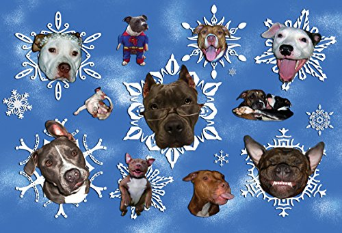 Snow Card Pit - Pit Bulls Are Like Snowflakes Holiday Cards (Pack of 10)