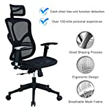 Argomax Mesh ergonomic office chair (EM-EC001)