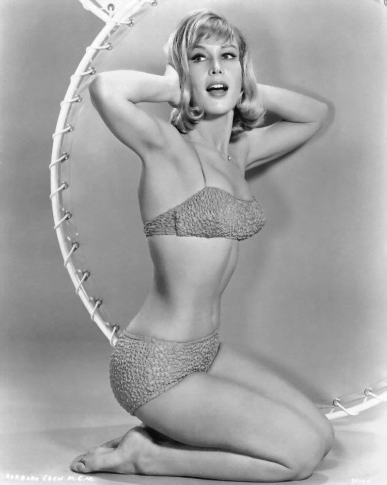 No white or black borders Barbara Eden 8x10 Photo What you see is what you get No Image is Cropped #MS5382