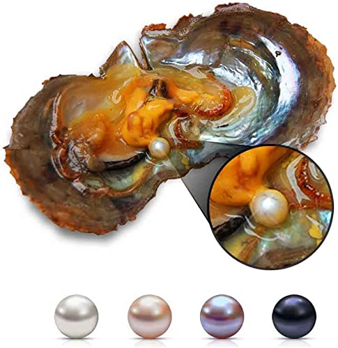 USA Free Ship Pick a Pearl 6-7mm Surprise Color Akoya Round Pearl Oyster Wish