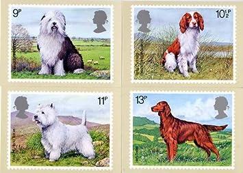 British Dogs