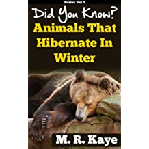 Did You Know? Animals That Hibernate In Winter