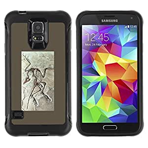 All-Round Hybrid Rubber Case Hard Cover Protective Accessory Compatible with SAMSUNG GALAXY S5 - biology paleontology fossil