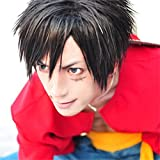 One Piece Monkey D Luffy cosplay costume wig