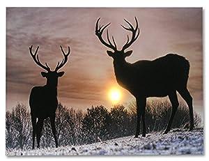 Amazon Com Deer Winter Scene Light Up Deer Picture