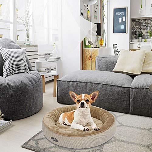 Pecute Cama para Gatos Colchoneta Basic para Perros y Gatos (mediana: 55cm de diámetro*15cm de altura): Amazon.es: Hogar