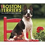 Just Boston Terriers 2018 Daily Desk Boxed Calendar