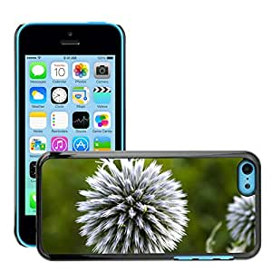 Print Motif Coque de protection Case Cover // M00158531 Macro de la flor púrpura de la // Apple iPhone 5C