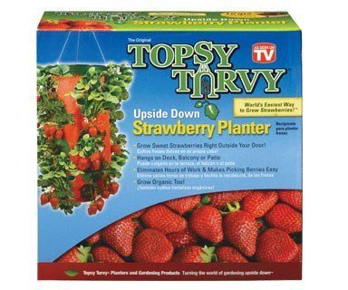 Topsy Turvy Upside Down Strawberry Planter by Felknor Ventures As Seen on TV