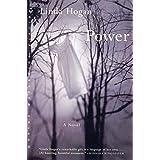 Power: A Novel (Norton Paperback Fiction)