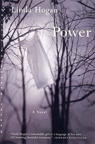 Hogan Cover - Power: A Novel (Norton Paperback Fiction)