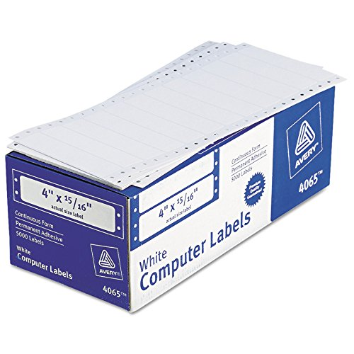 Avery 04065 White Continuous Form Hi- Speed (5000, 4x15/16 Labels)