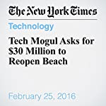 Tech Mogul Asks for $30 Million to Reopen Beach | Christine Hauser