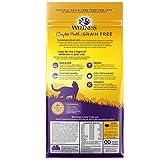 Wellness Natural Pet Food Complete Health Grain Free Dry Indoor Salmon & Herring Cat Food, 2.25 lb