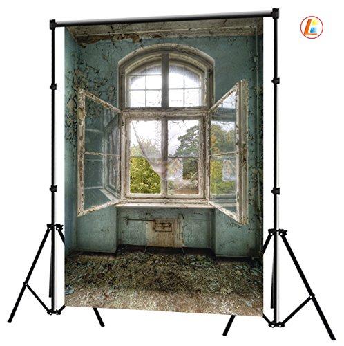 LB 6x9ft Old Windows Vinyl Photography Backdrop Customized Photo Background Studio Prop FG112
