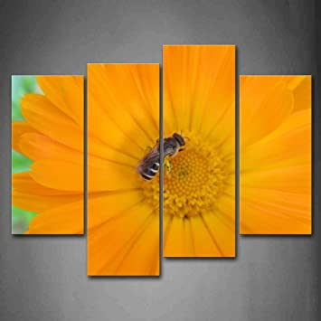Amazon.com: First Wall Art - Bee Is Gather Honey On Yellow Flower ...
