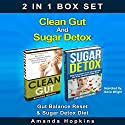 Clean Gut and Sugar Detox Set: Gut Balance Reset & Sugar Detox Diet Audiobook by Amanda Hopkins Narrated by Dave Wright
