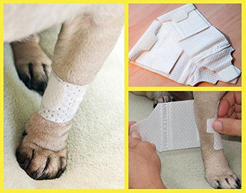 Picture of Pawflex Bandages Basic Bandages for Pets (2 Standard, 2 Wide) Large/Xlarge