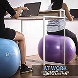 Body Shape Wellness - Premium Exercise Gym Quality