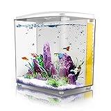 Goldfish Tanks