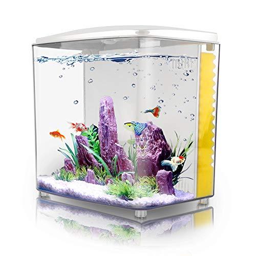 FREESEA 1.4 Gallon Betta Aquarium Square Fish Tank with LED Light and Filter Pump ()