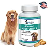 BestLife4Pets Dog Glucosamine Chondroitin and Turmeric Joint Pain Relief Supplement (60 Chews)