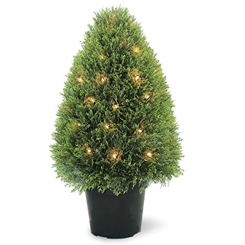 National Tree 30 Inch Upright Juniper Tree with 50 Clear Lights in Green Round Growers Pot (LCY4-300-30) by National Tree Company