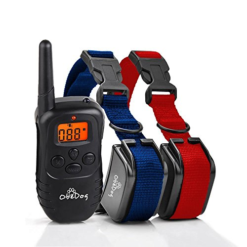 stride two dog series rechargeable