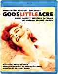 Cover Image for 'God's Little Acre'